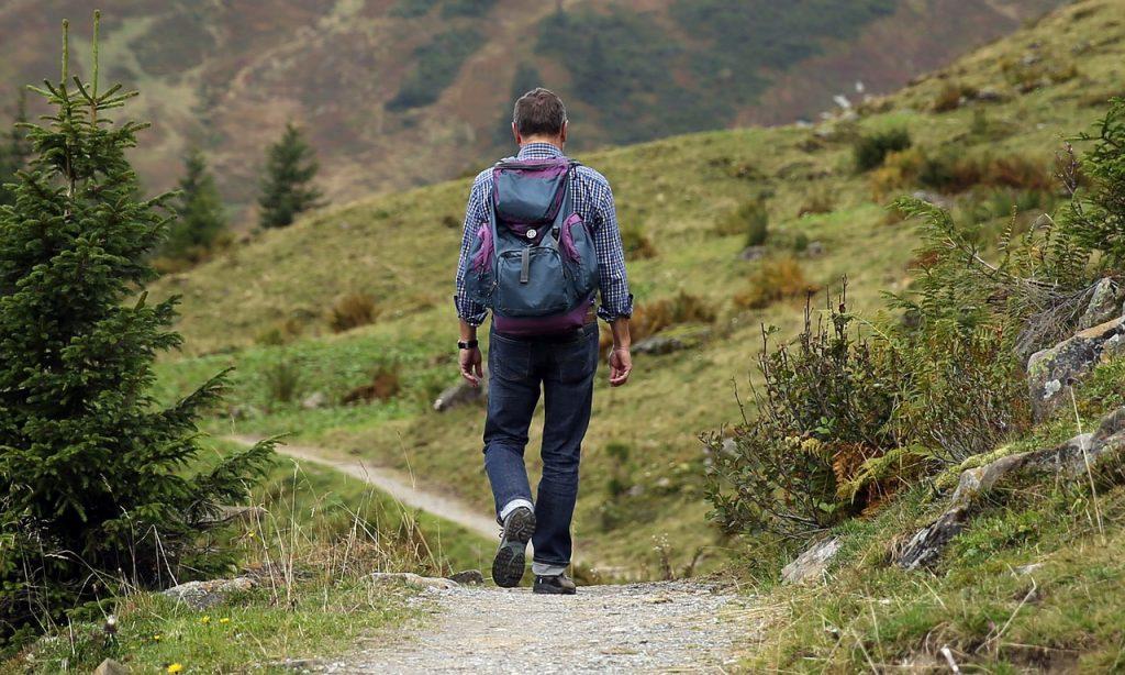 Wanderer Credit: Pixabay