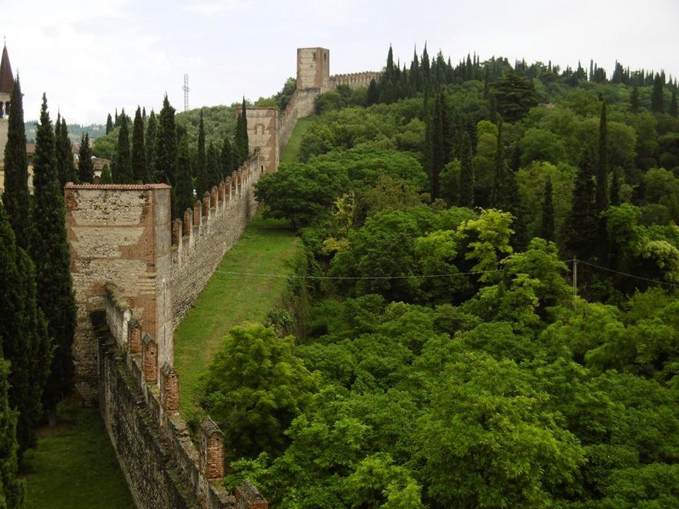 A piedi a Verona con il vostro cane, la scusa perfetta per godersi un tramonto sull'Adige e una passeggiata lungo la diga del Chievo
