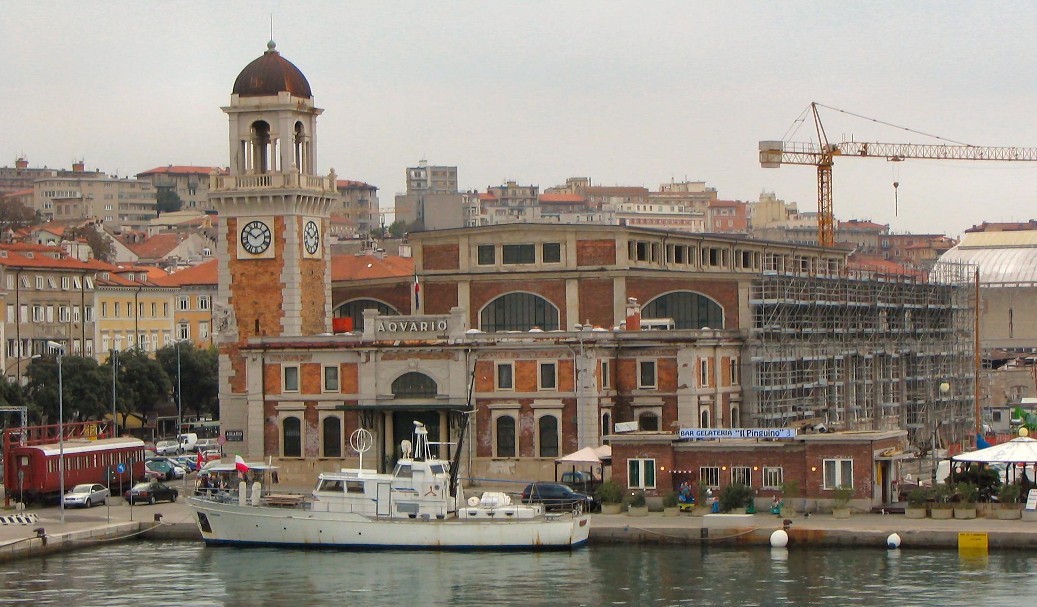 Da Gomorra al Padrino, da Coppola a Tornatore e Salvatores: sono tanti i registi che hanno scelto Trieste come set. Scopriamoli con una regista