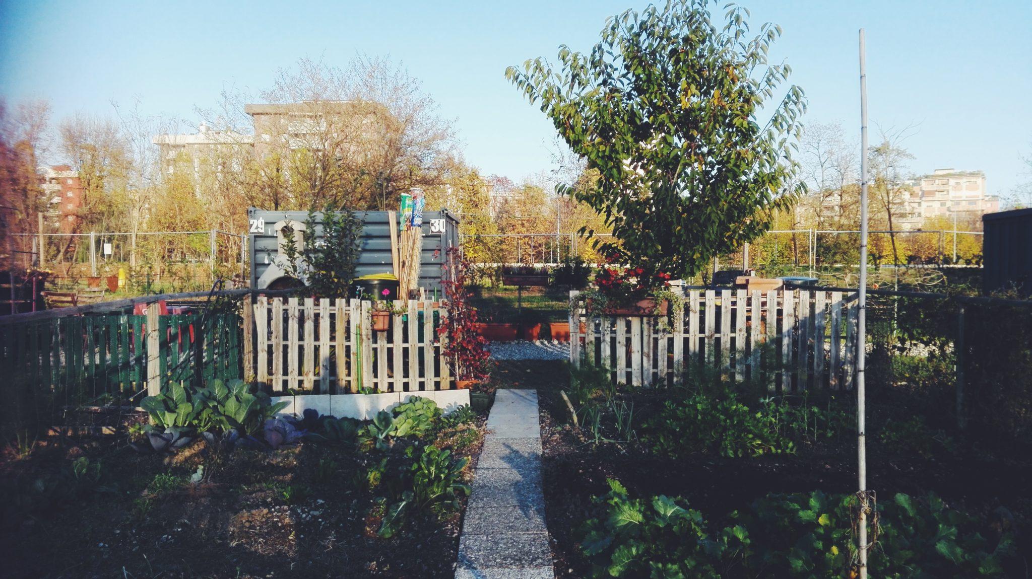La grigia metropoli è anche verde: gli orti in città fanno fiorire periferie e panorami inaspettati. Qui ogni abitante può avere un po' di natura