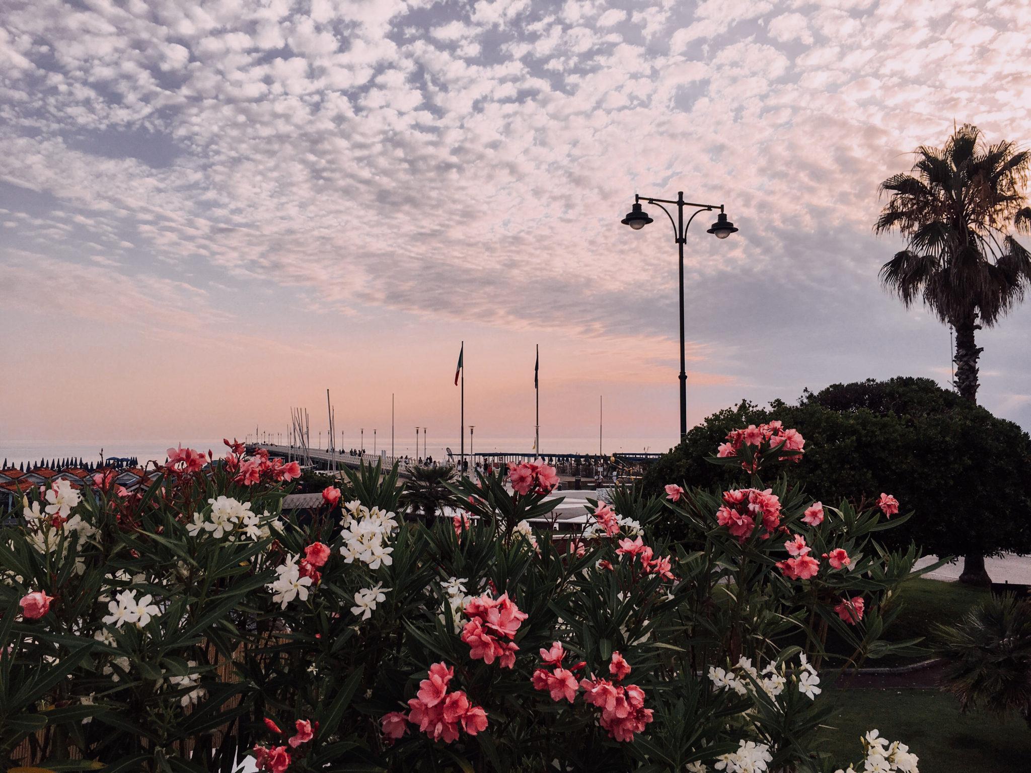Mettiamo che siate di passaggio da Forte dei Marmi, o che ci vogliate trascorrere un'alba: ecco un itinerario perfetto per voi e per il vostro orologio