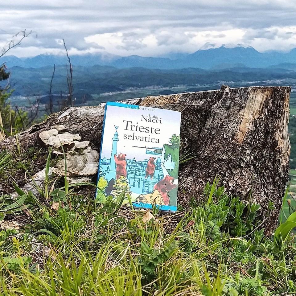 """Lo scrittore Luigi Necci, autore di """"Trieste Selvatica"""" ci racconta una Trieste di foreste sterminate dove ha avuto luogo la Storia e di quartieri popolari"""