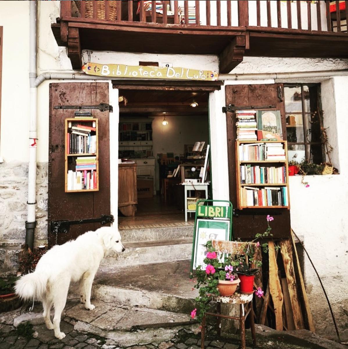 Nella baita di un piccolo borgo in Valchiusella, provincia di Torino, c'è una biblioteca aperta a tutti ma soprattutto ai lupi: la Biblioteca del Lupo